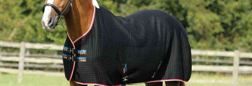 chemises pour chevaux